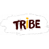 Tribe Limited